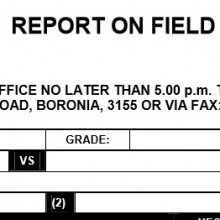 Report on Field Umpire