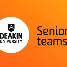 EFL-seniorteams-v2