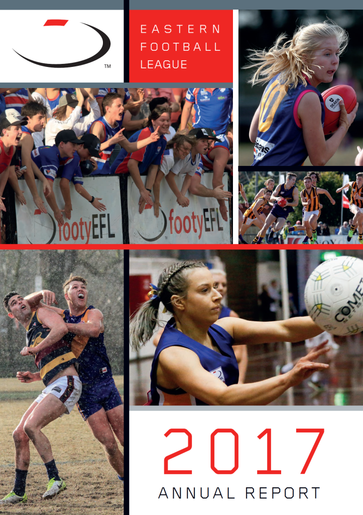 2017 Annual report front cover